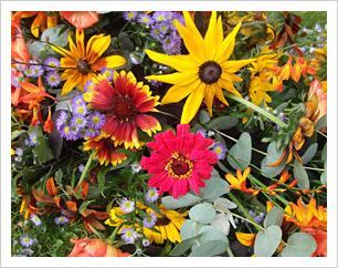 flowersbright