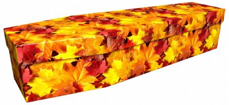 funerals-totnes-devon-coffins-cardboard-autumn-leaves