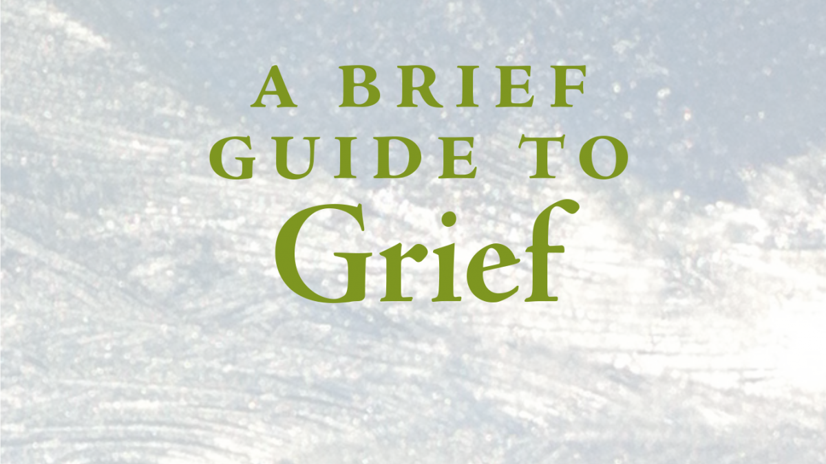 lois-tonkin-brief-guide-grief