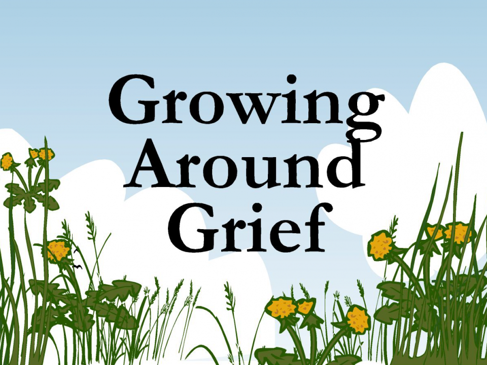 lois-tonkin-growing-around-grief